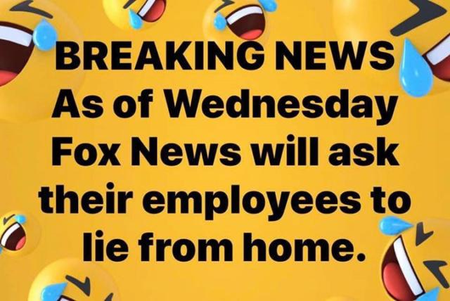 Fox News - For Entertainment Purposes Only Fox_li10