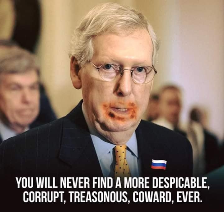 US Republican Congress Lunacy Rant Thread - Page 6 Mcconn11