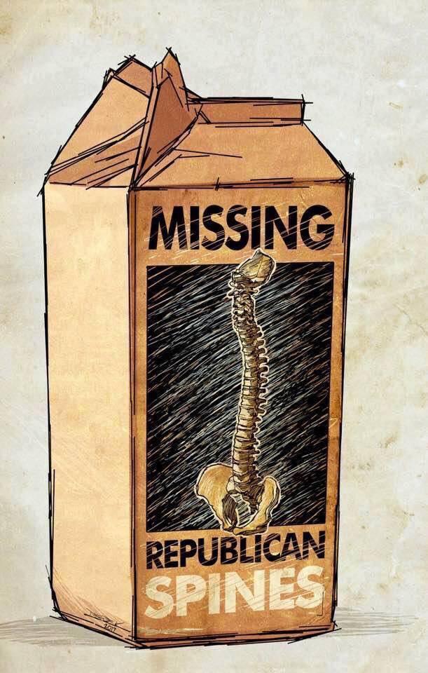US Republican Congress Lunacy Rant Thread - Page 8 Republ44
