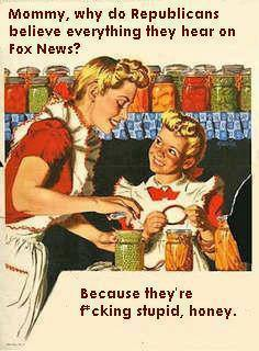 Fox News - For Entertainment Purposes Only Republ68