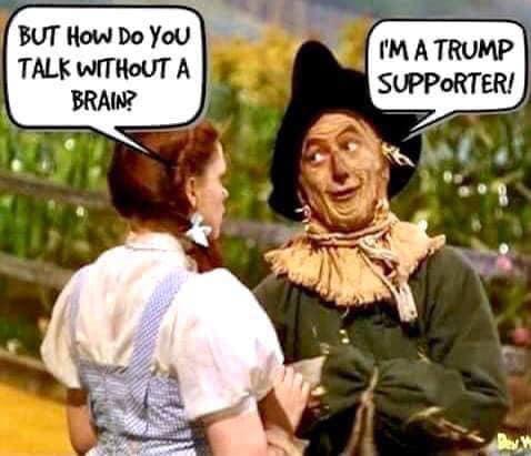 Donald Trump Vent Thread - Page 3 Scarec10