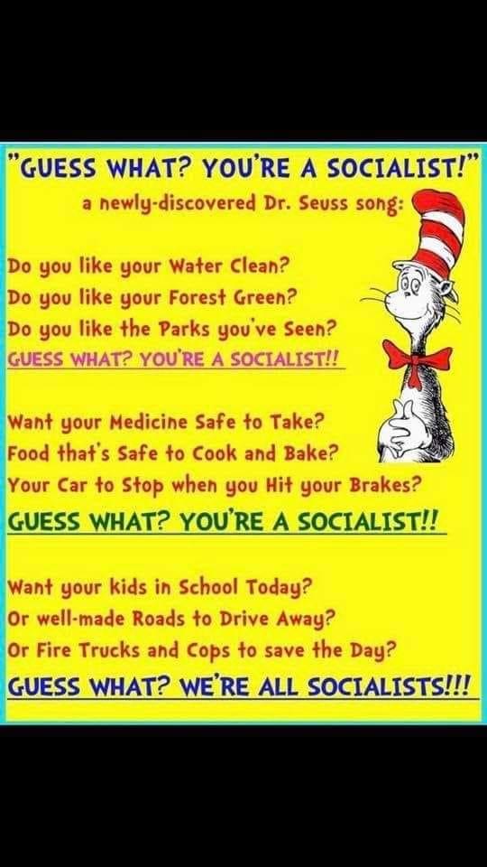 US Republican Congress Lunacy Rant Thread - Page 8 Seuss_10