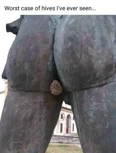 The Picture Jokes thread - Page 12 Statue11