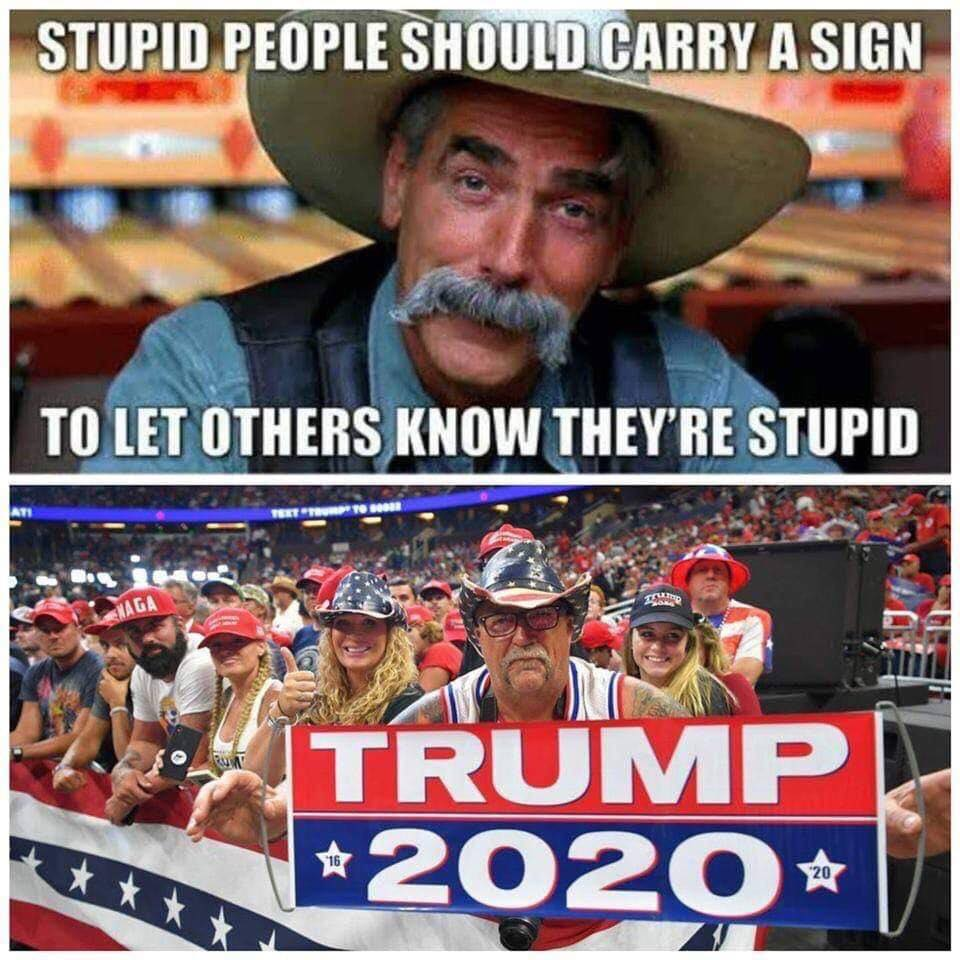 Donald Trump Vent Thread - Page 15 Stupid13