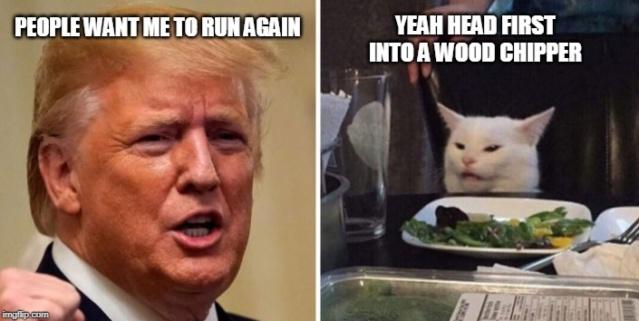 Donald Trump Vent Thread - Page 7 Trum1397