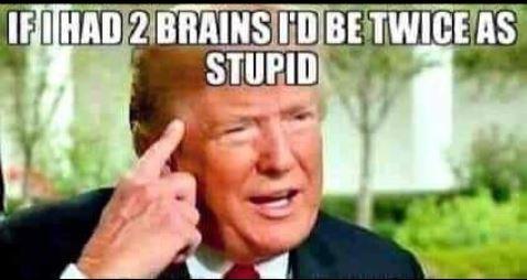 Donald Trump Vent Thread - Page 9 Trum2116