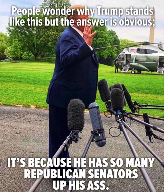 Donald Trump Vent Thread - Page 12 Trump157