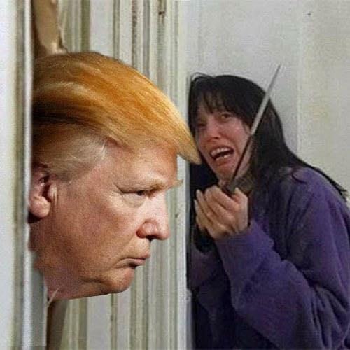 Donald Trump Vent Thread - Page 3 Trump246
