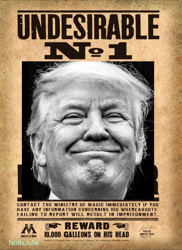 Donald Trump Vent Thread - Page 6 Trump316