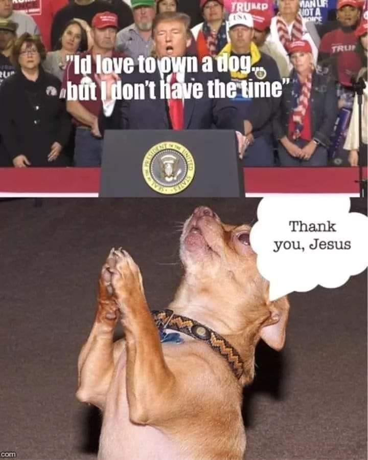 Donald Trump Vent Thread - Page 10 Trump406