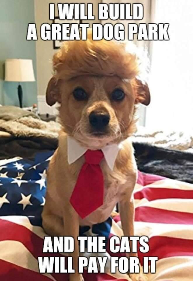 Donald Trump Vent Thread - Page 12 Trump479