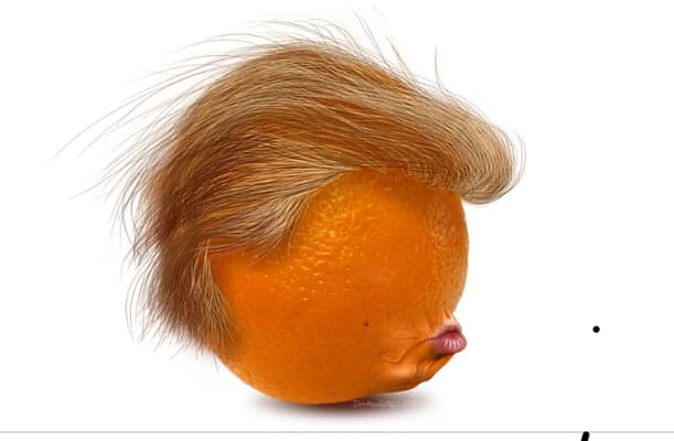 Donald Trump Vent Thread - Page 14 Trump532