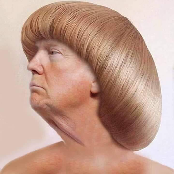 Donald Trump Vent Thread - Page 15 Trump544