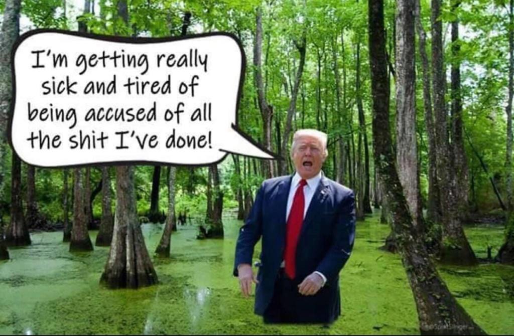 Donald Trump Vent Thread - Page 10 Trump887