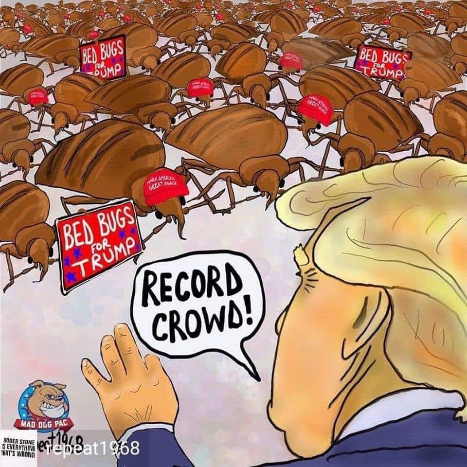 Donald Trump Vent Thread - Page 10 Trump907