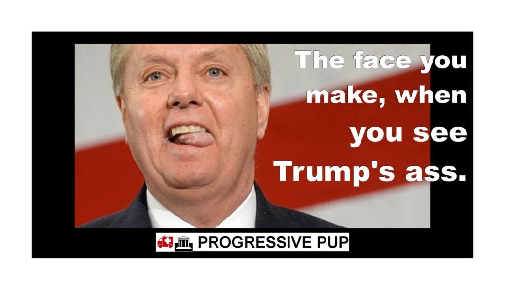 US Republican Congress Lunacy Rant Thread - Page 8 Trump982