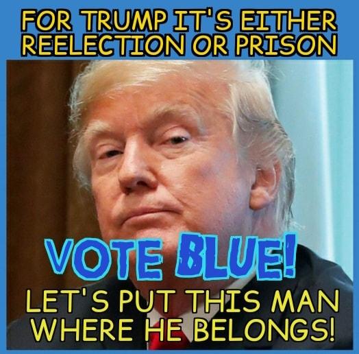 Donald Trump Vent Thread - Page 3 Vote_b10