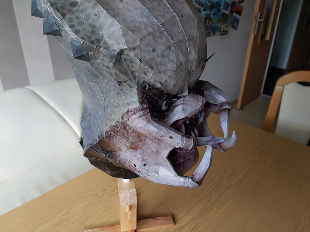 Predator Head 20200441