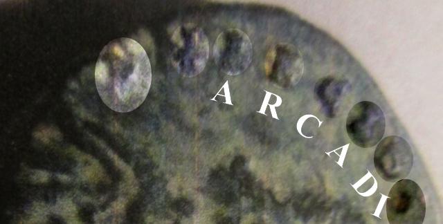 """Numus d'Arcadius """"VIRTVS-EXERCIT//CONS"""" ... Arcadi10"""