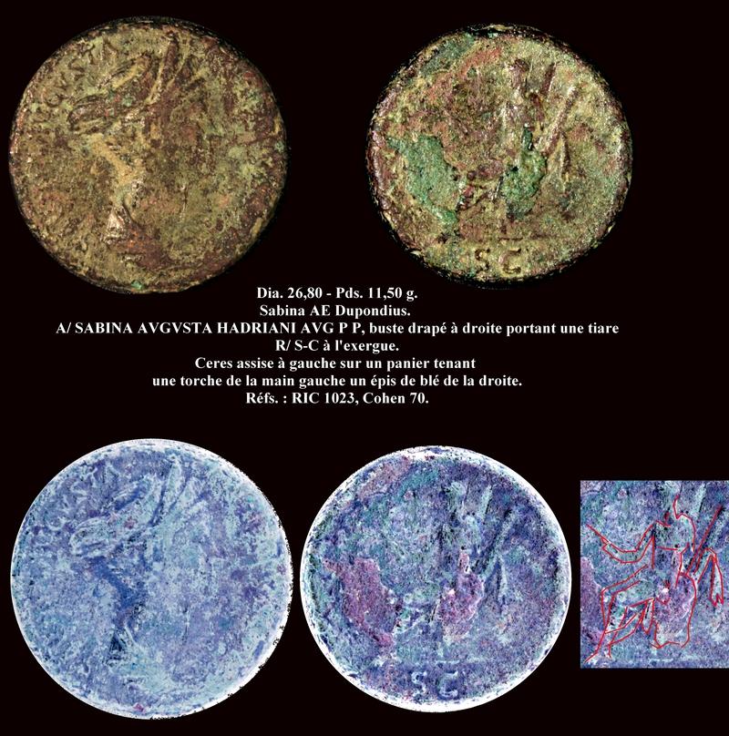 Dupondius pour Sabine R135_s10