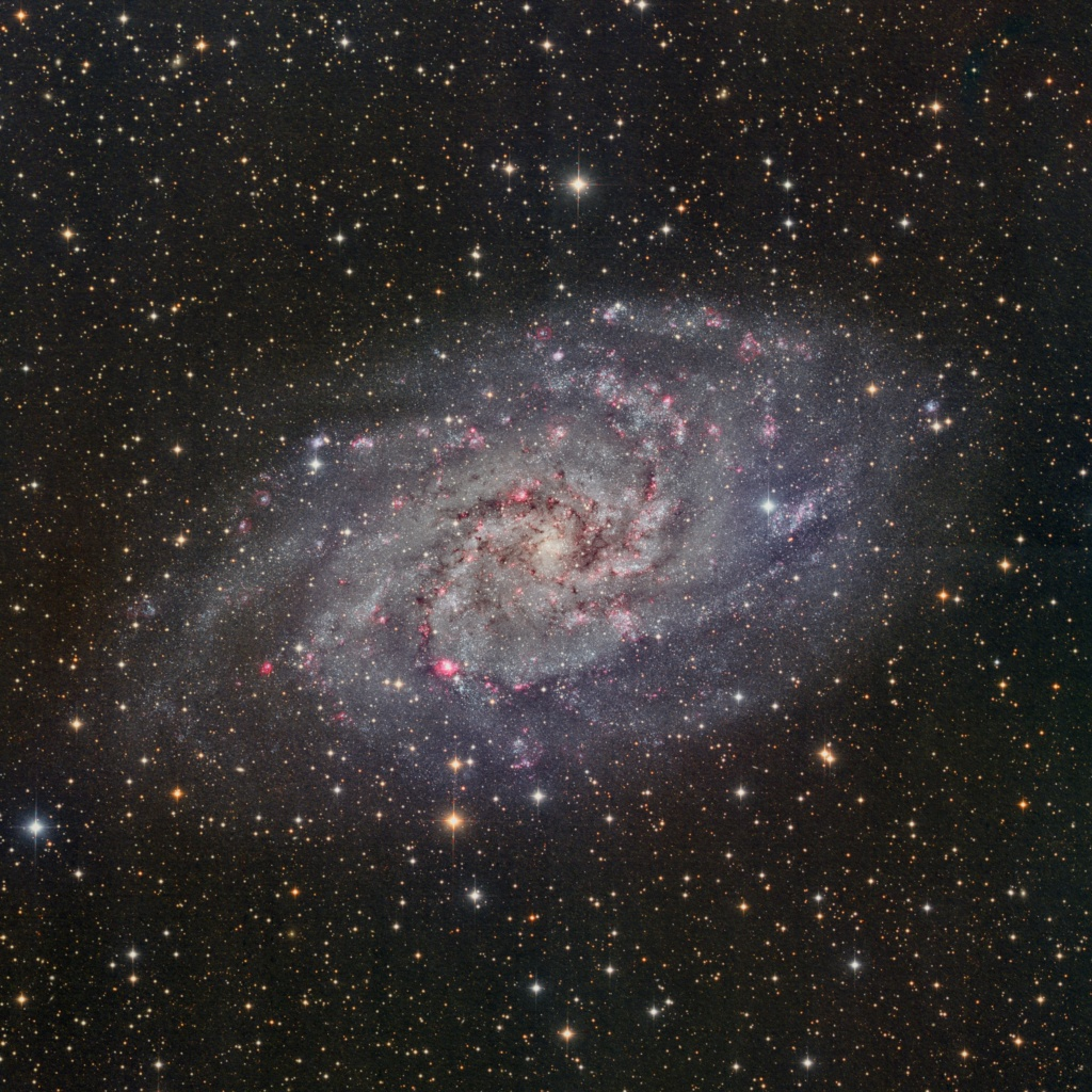 M33 galaxie du triangle M33_ha10