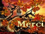 Newsletter du 25 septembre 2018 du Jardin du Rêve Merci_38