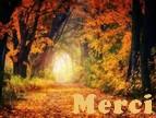 Newsletter du 25 septembre 2018 de Messages Reçus Merci_41