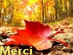 Newsletter du 2 octobre 2018 de Messages Reçus Merci_46