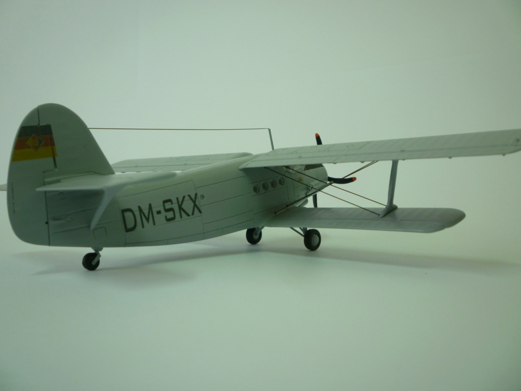 Flugzeug AN2 in 1/87 P1120121