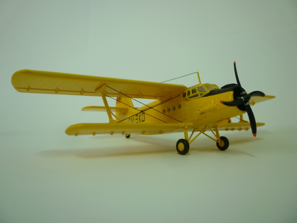 Flugzeug AN2 in 1/87 P1120124