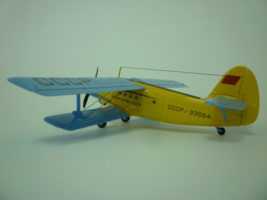 Flugzeug AN2 in 1/87 P1120129