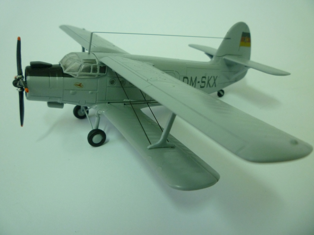 Flugzeug AN2 in 1/87 P1120133