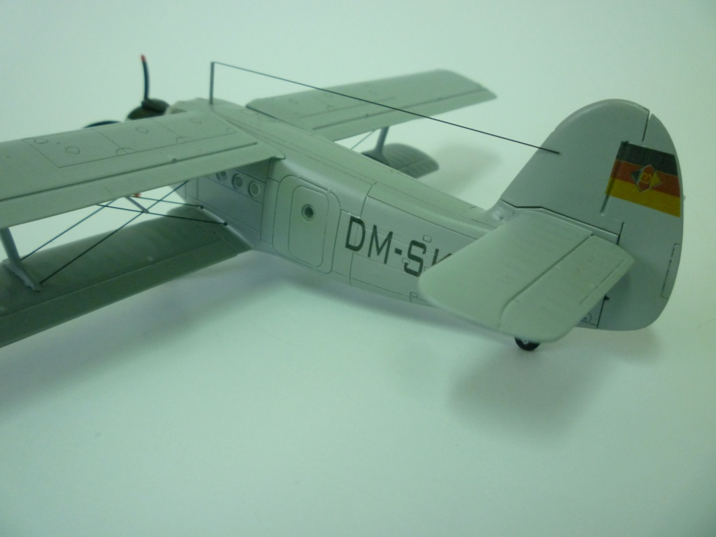 Flugzeug AN2 in 1/87 P1120134