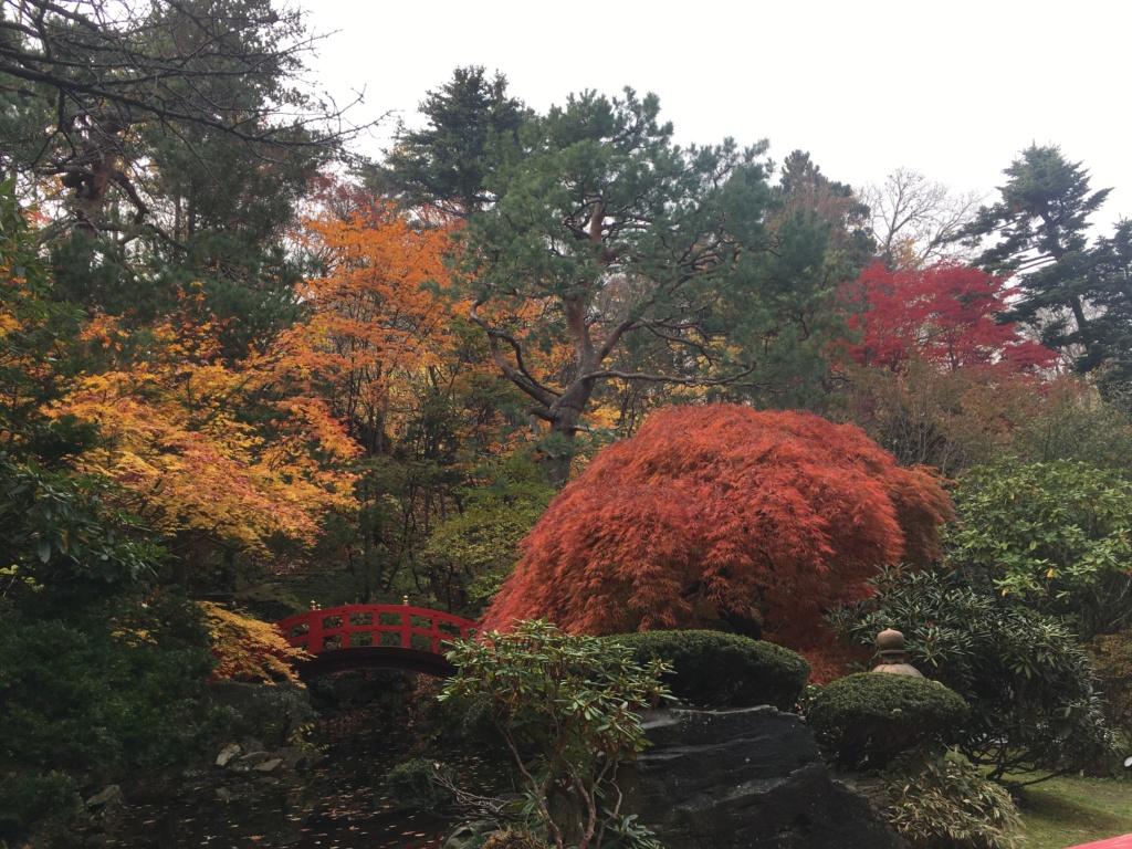 Tons d'automne Image10
