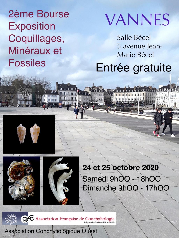 Bourse exposition de Vannes 56000 des 24 et 25 octobre 2020 Projet13
