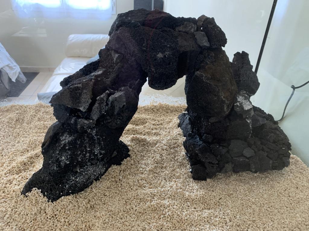 Le récif des volcans Img_1110