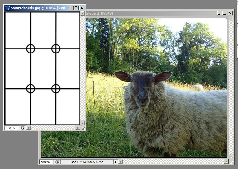 Tutoshop : les tutos pour photoshop ! Tuto510