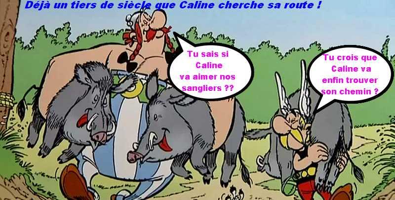Joyeux anniversaire Caline Caline10