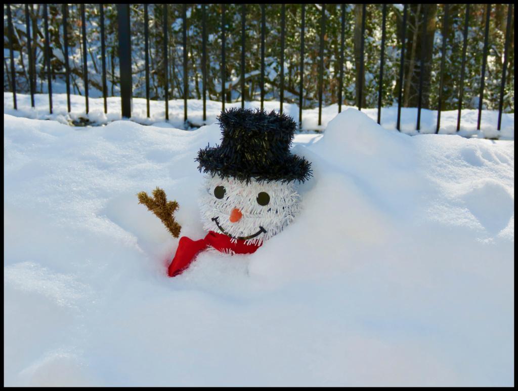 Tiz Winter Img_3410