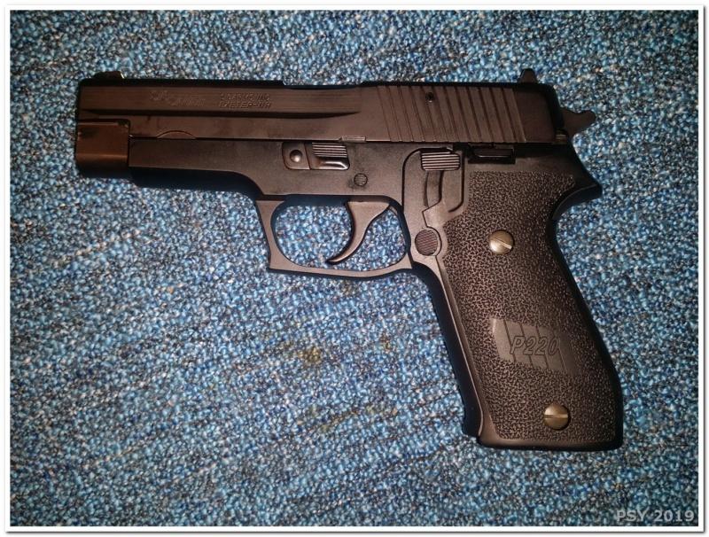 La famille SIG s'agrandit P220_011