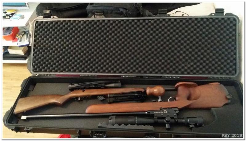 "Mes carabines et fusils ""sniper"" Snip_013"