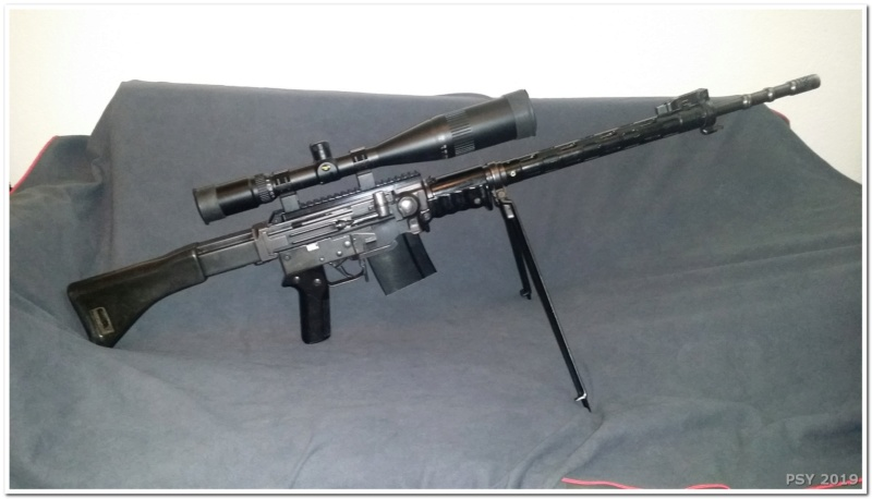 "Mes carabines et fusils ""sniper"" Snip_015"
