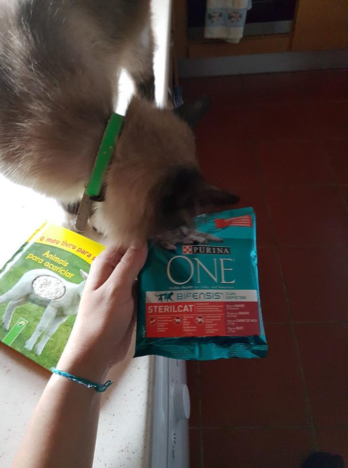Amostras My Nestlé - Reembolso Purina One Gato 37757610