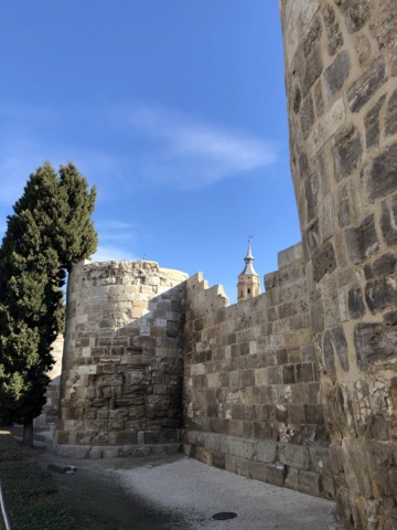 QUEDADAS (ARA): Visita al Museo Ossa en Utebo. 09.03.2019  9da61c10