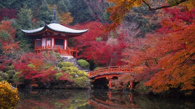 16 bài học làm thay đổi cuộc sống chỉ sau một năm sống tại Nhật Bản Bai-ho13
