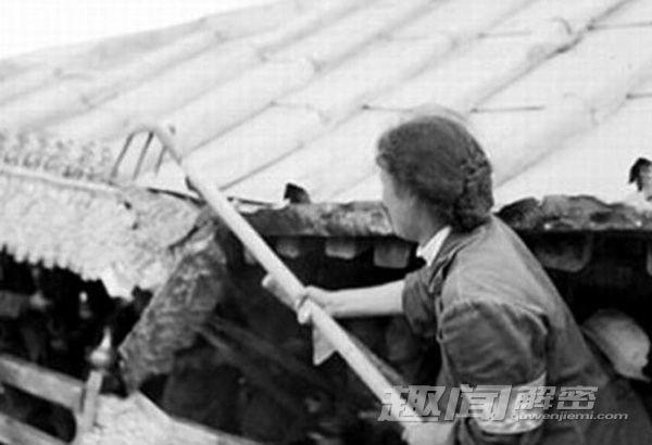 Cảnh mộ của gia quyến Khổng Tử bị đào trong thời Cách mạng Văn hóa Cach-m16