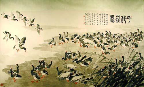 Chim nhạn – Hãy trả lại tên cho ngỗng Chim-e11