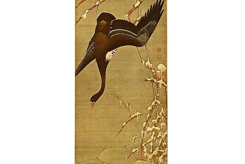 Chim nhạn – Hãy trả lại tên cho ngỗng Chim-e12