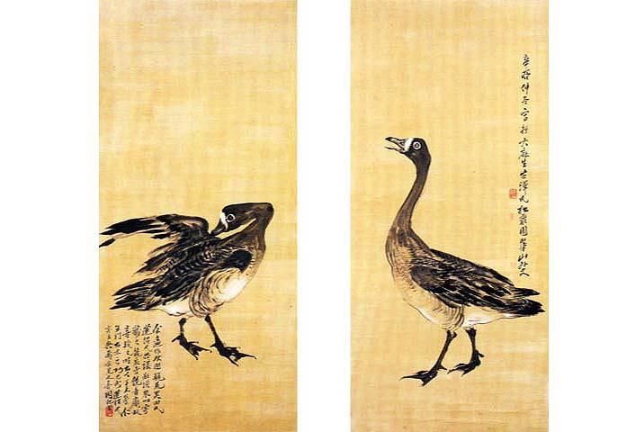 Chim nhạn – Hãy trả lại tên cho ngỗng Chim-e14