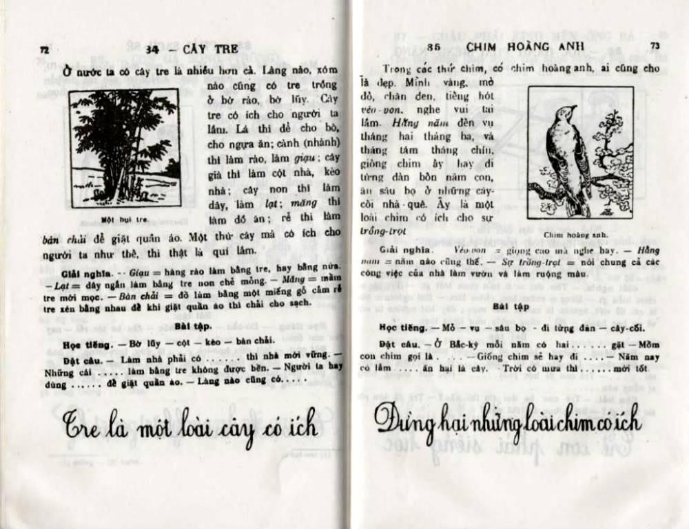 Quốc Văn Giáo Khoa Thư Da-72710